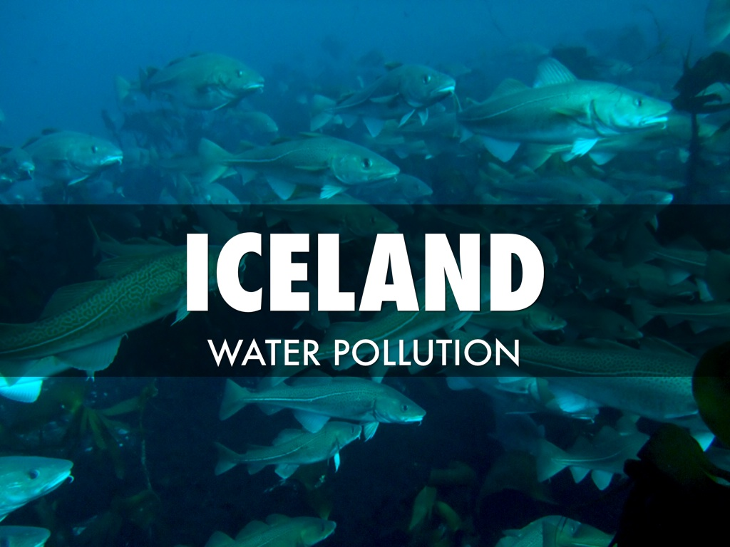 iceland water case study Case studies see how clients use marine & shipping company case study integrum airline industry case study integrum water utility case study adshel.