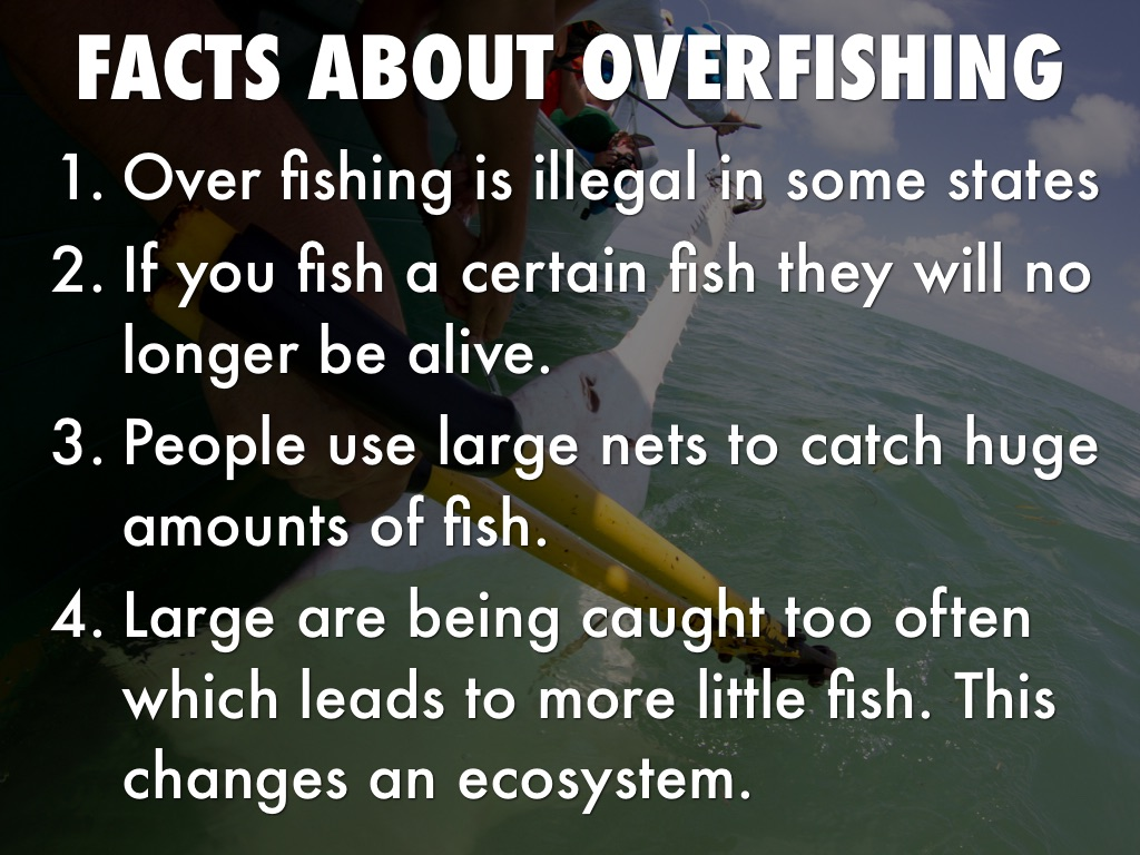 overfishing by mason leonhard