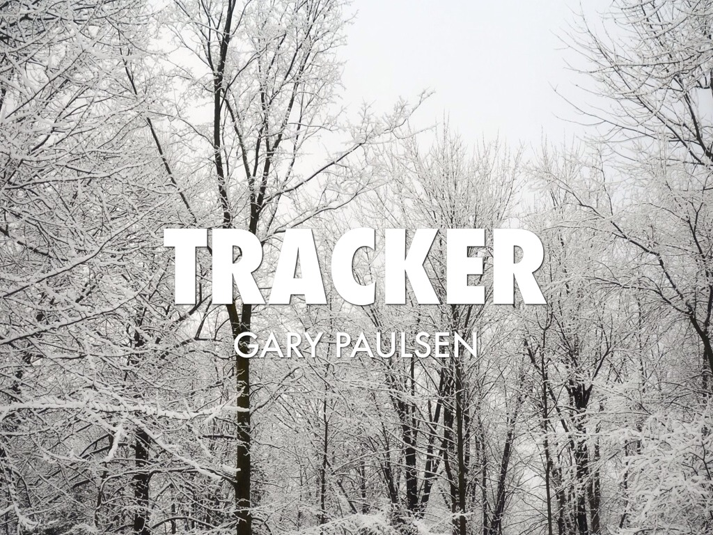 Tracker by Hayleigh Walters