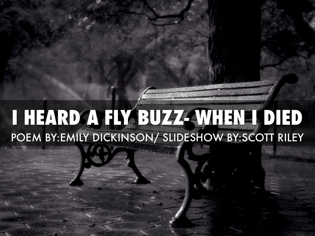 an overview of the poem i heard a fly buzz when i died by dickinson I felt a funeral in my brain of the publishers and the trustees of amherst college from the poems of emily dickinson: i heard a fly buzz - when i died - (591.