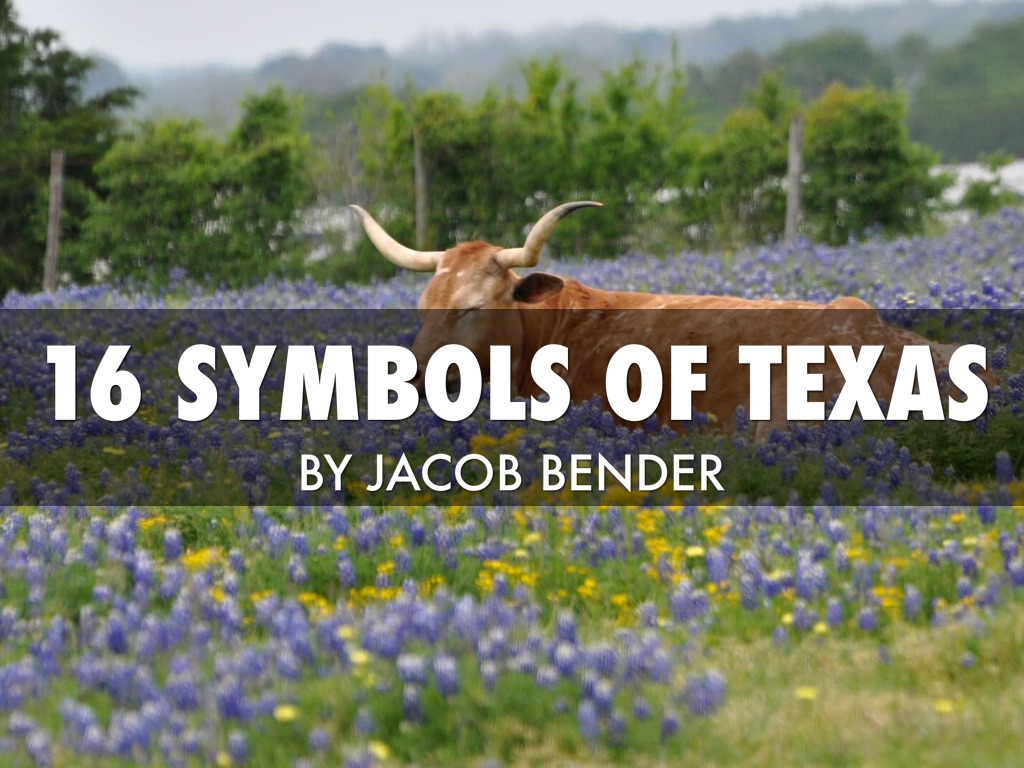 16 Texas State Symbols By Jacob Bender