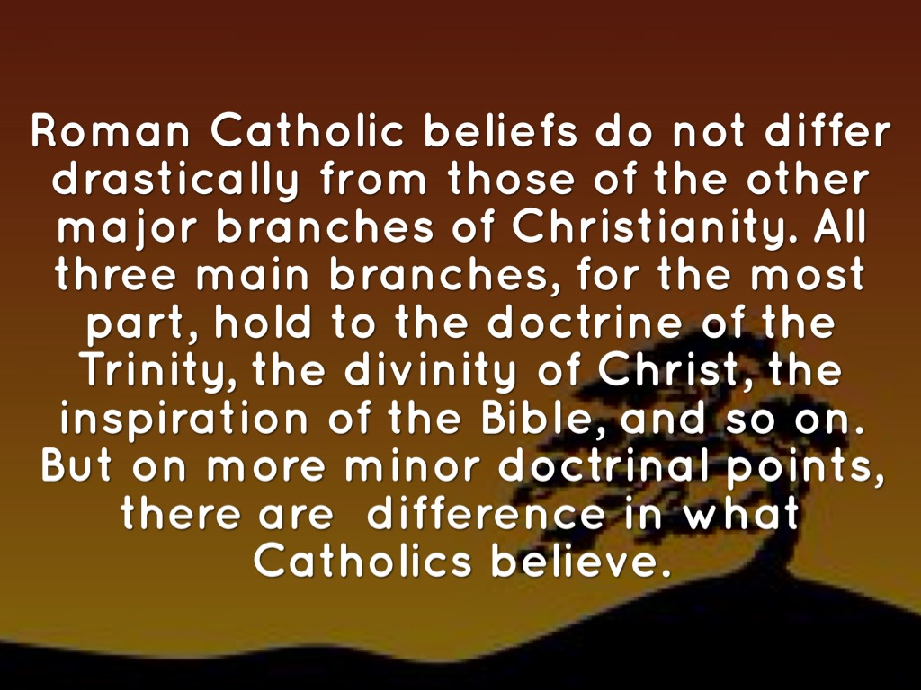 the differences in beliefs that separate roman catholics from other christian faiths Religion and euthanasia death is one of the most important things that religions deal with all faiths offer meaning and explanations for death and dying all faiths try to find a place for death.