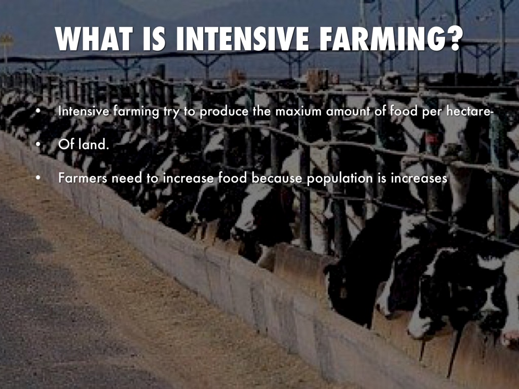 intensive farming Nitrogen is very important for all plant life animals eat plants when plants and animals die, they decompose (rot) and the nitrogen returns to the soil.