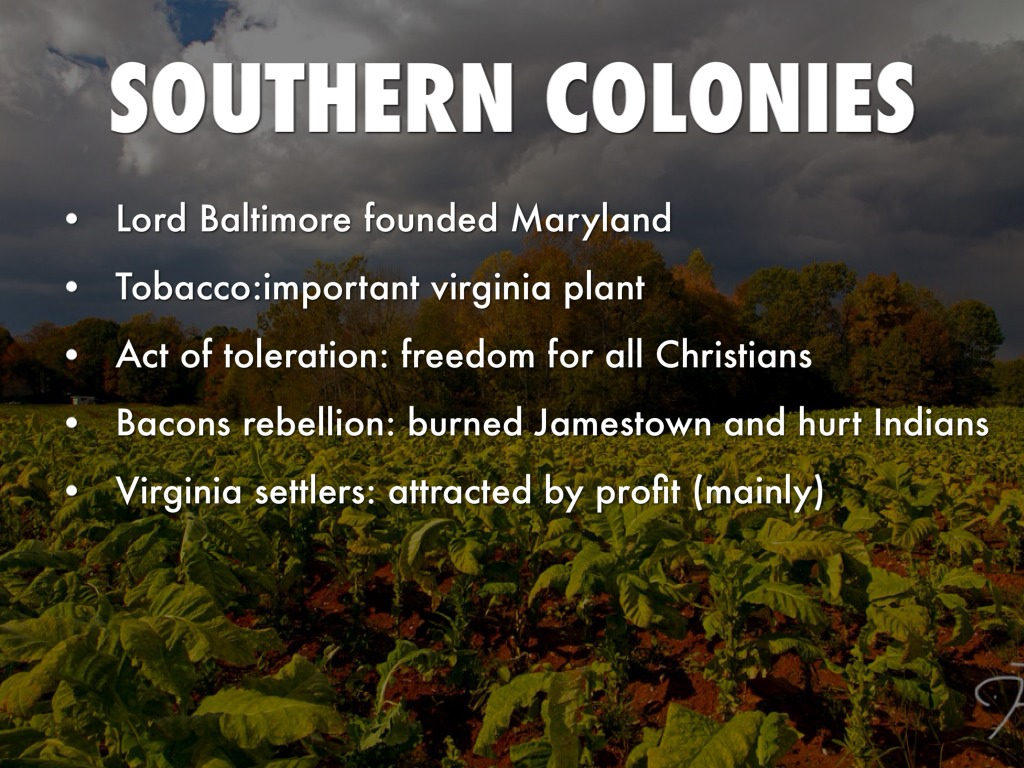 3 Types of Colonies by Travis Mongoven