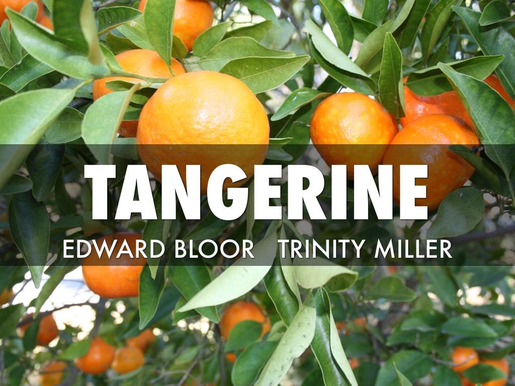 Tangerine By Edward Bloor Pdf