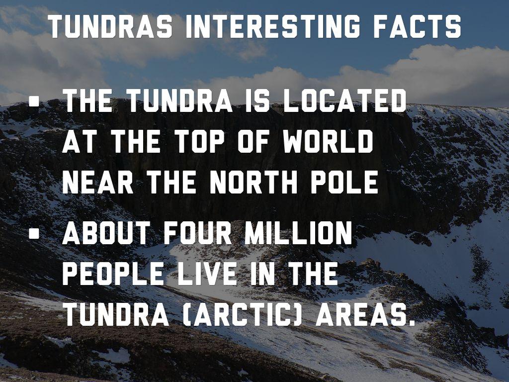 Kendall Quall Tundra by Matt Danahy