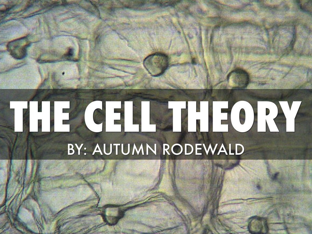 haiku on cell theory A presentation by marina kimzey created with haiku deck, free presentation  software that is simple, beautiful, and fun.