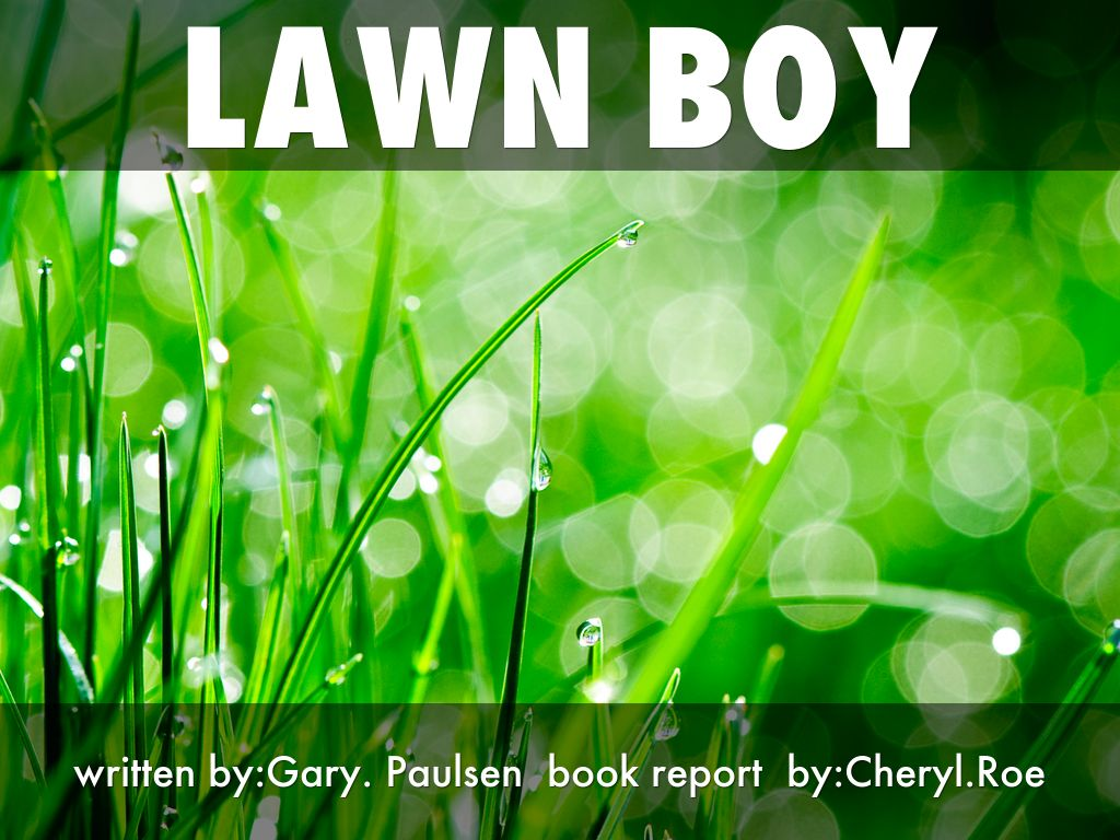 lawn boy by 65rogers53