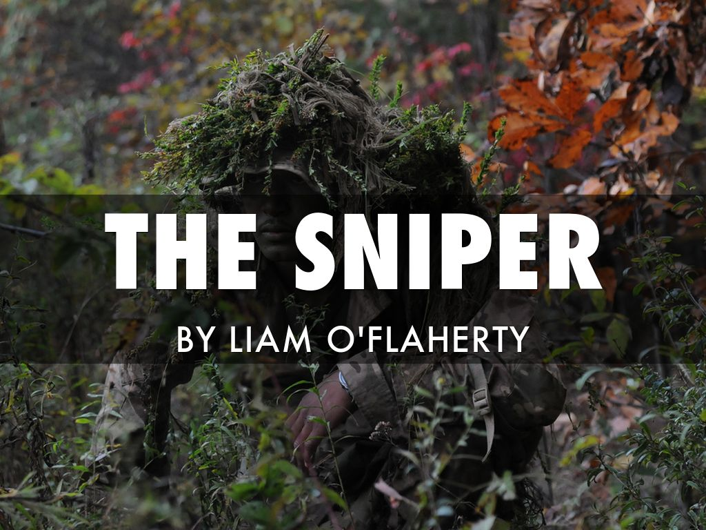 a review of liam oflahertys the sniper The sniper by liam o'flaherty the sniper (1923) is a very popular short story set during the battle of dublin, a series of street fights that occurred between june 28th and july 5th, 1922, which marked the beginning of the irish civil war.