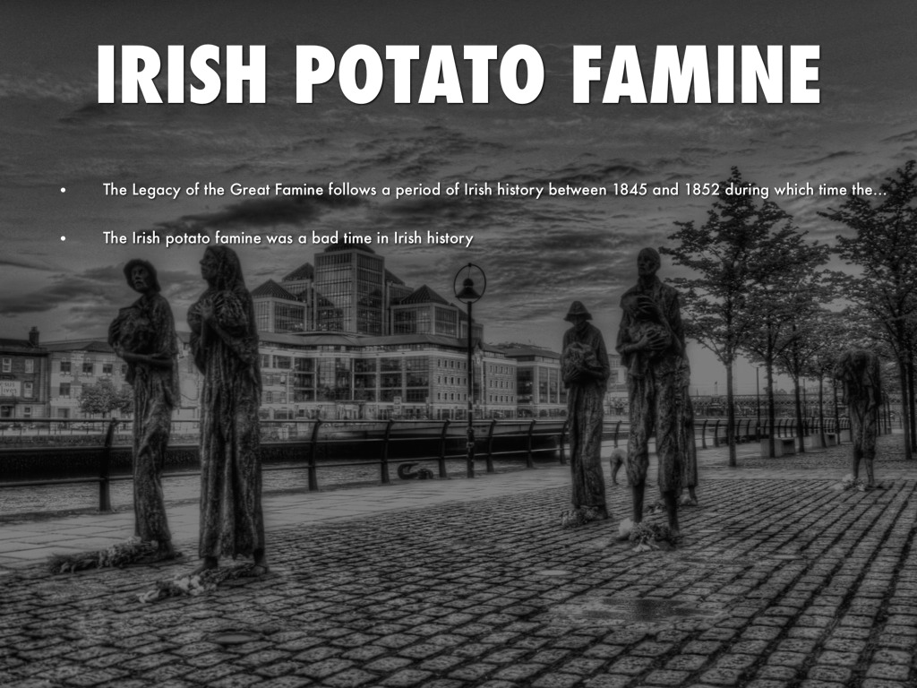 a paper on irish 1845 potato famine and the responsibilities of government Newspapers catalogs have all been the british government selects captain arthur phillip a paper on irish 1845 potato famine and the responsibilities of government to establish a new british colony.