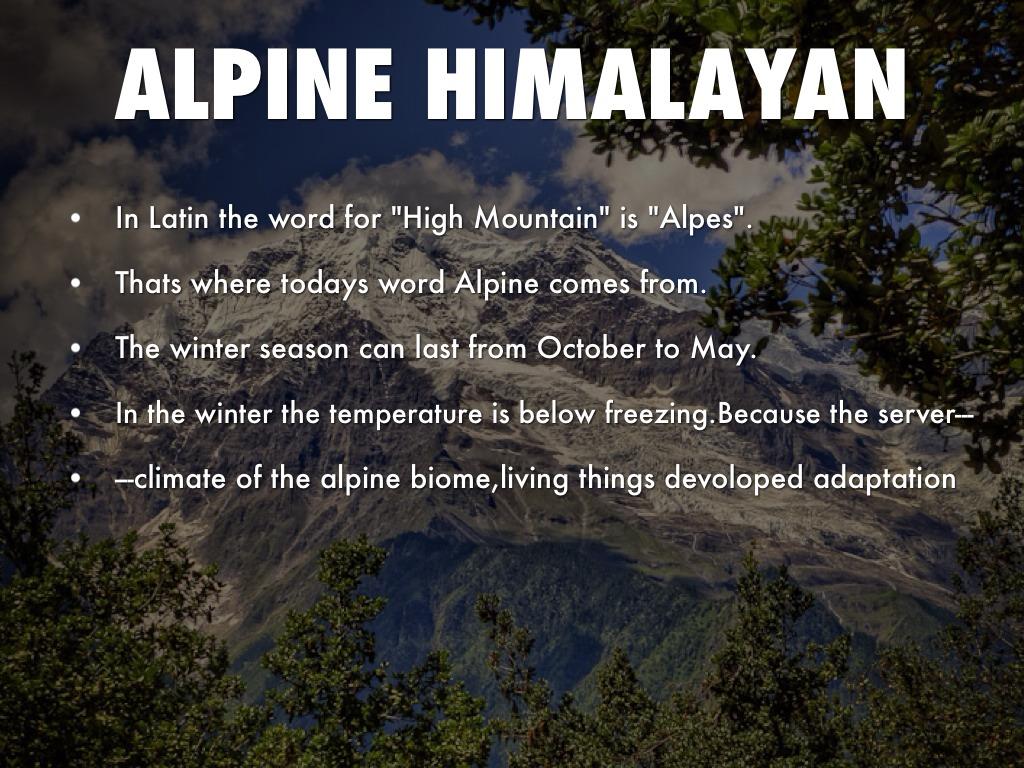 himalayan alpine biome
