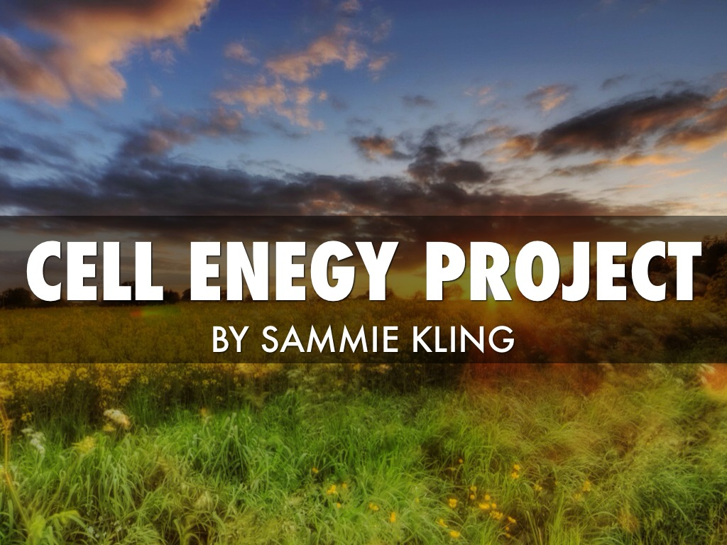 Cell Energy Project