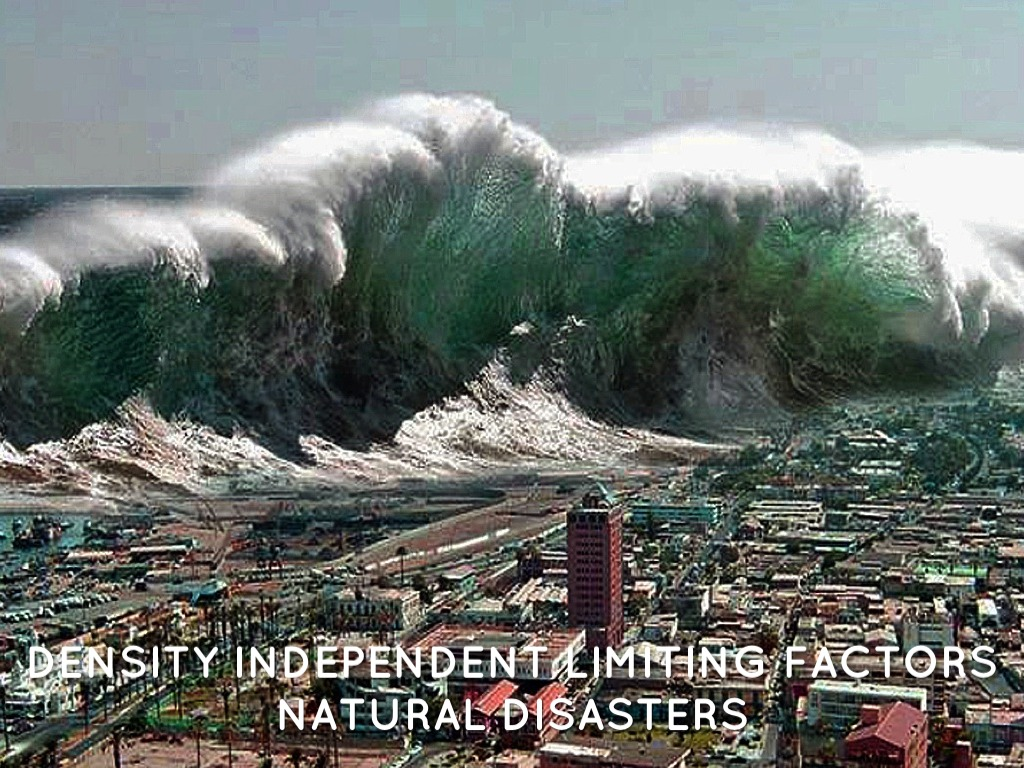 notes on natural disasters 1993-8-17  as natural disasters have taken their toll throughout the united states in recent years, calculating the economic losses can be an imprecise science.