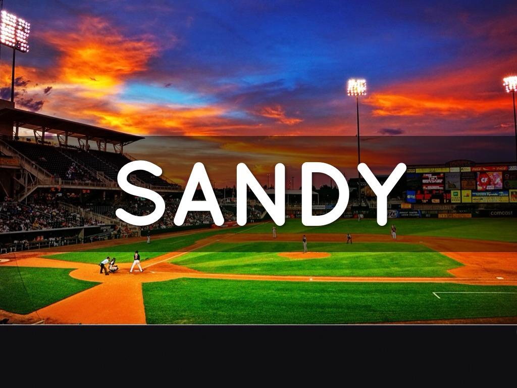 Happy Birthday Sandy By Jill Ritchie