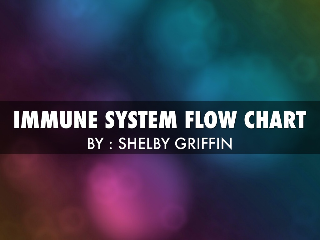 Immune System Flow Chart By Shelby Griffin