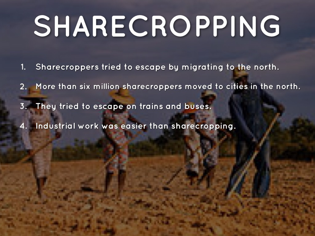 essay on sharecropping Reconstruction and sharecropping essay on reconstruction following the american civil war came the reconstruction act this is when the.