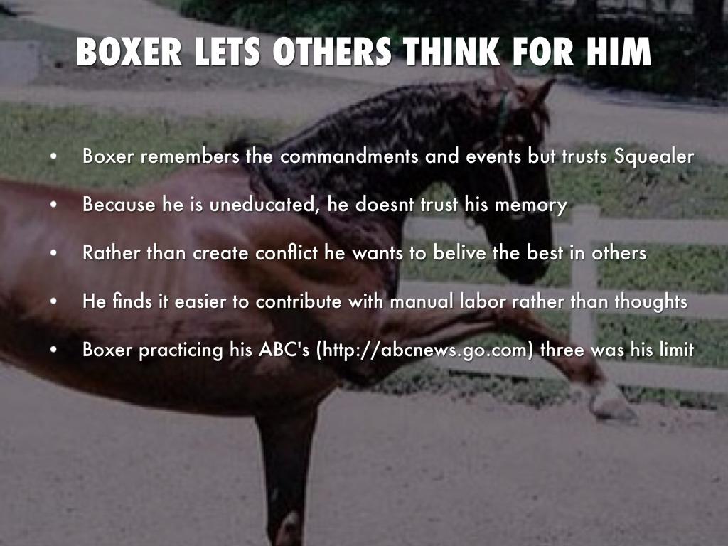 Animal Farm Plot: Summary & Character Analysis
