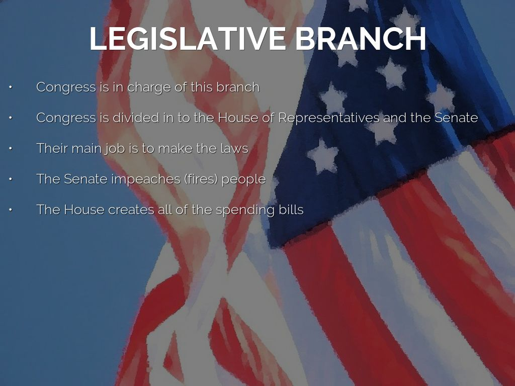 "an analysis of the character of the executive branch of united states government The executive branch the government of the united states"" (5 usc 103) federal government corporations: an overview this."