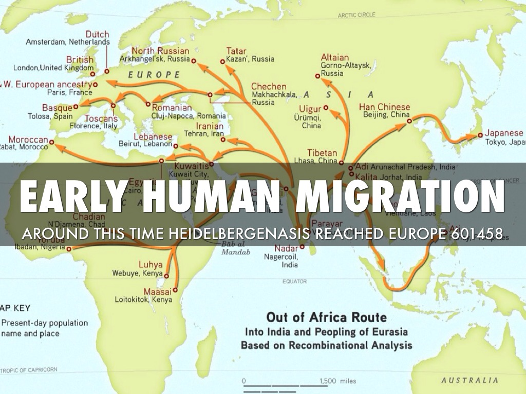 analysis of human migration Scientists revamp 'out of africa' model of early human migration  according to  genetic analysis, humans moving into eurasia interbred with.