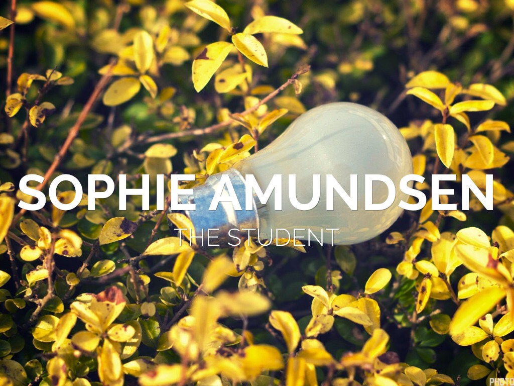 sophie s world Sophie's world summary & study guide includes detailed chapter summaries and analysis, quotes, character descriptions, themes, and more.
