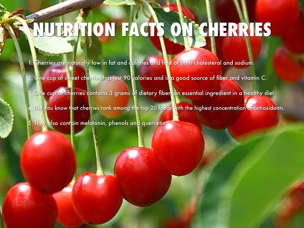 NUTRITION FACTS ON CHERRIES