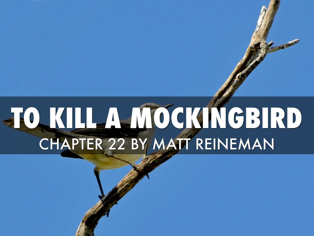 """to kill a mocking bird opens It's 1935 in maycomb, ala, children play in the street, wild dogs run loose, mockingbirds sing, and tom robinson fights for his life """"to kill a mockingbird"""" is a great."""