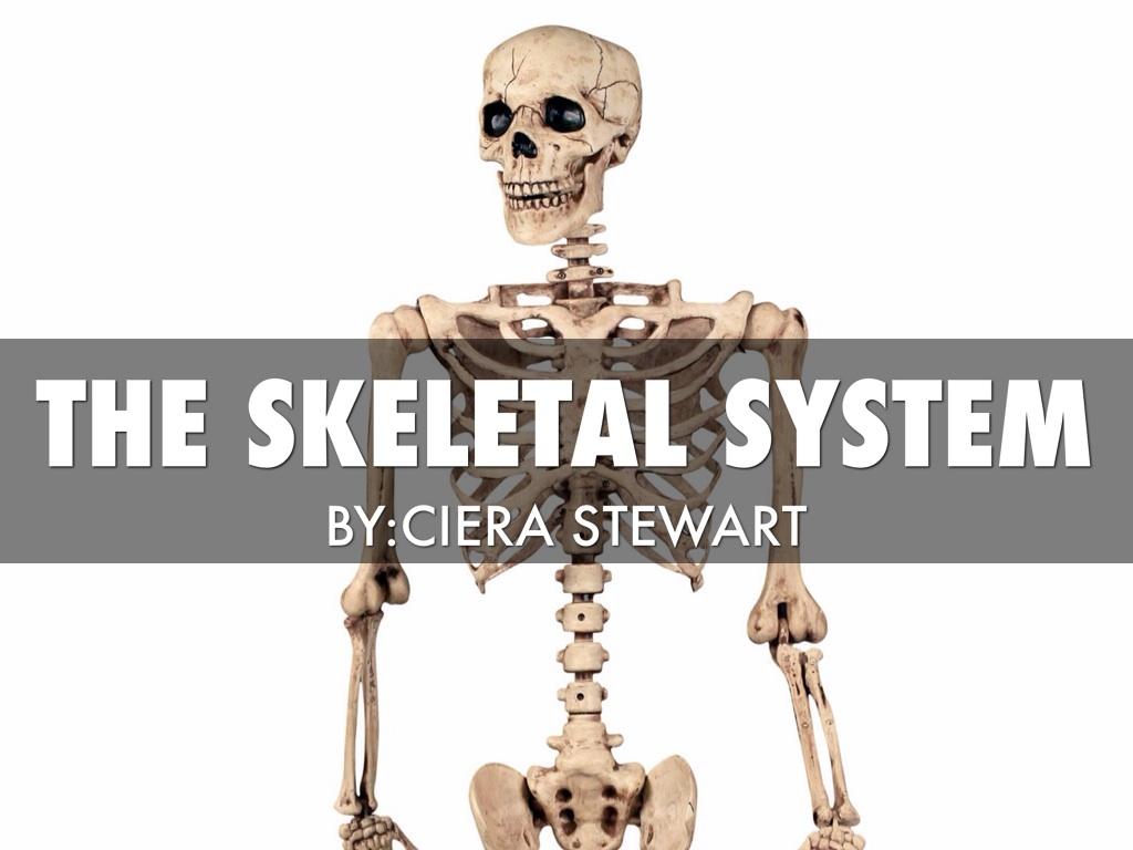 Science By Ciera Stewart