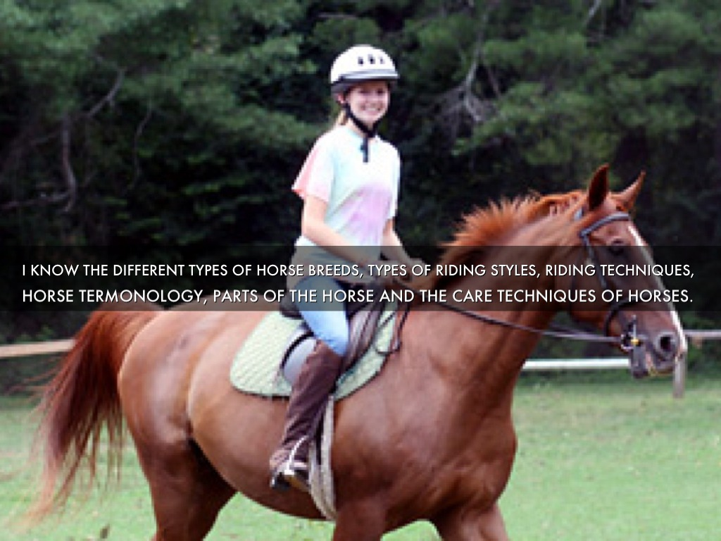 three ways i\u0027m literate by andrew cartmilli know the different types of horse breeds, types of riding styles, riding techniques,