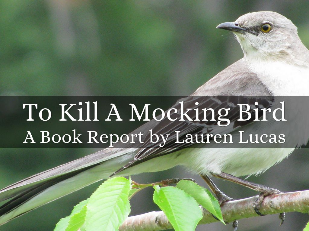 to kill a mocking bird by lal slide notes