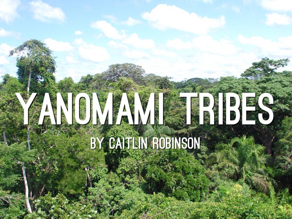 yanomamo tribe The yanomami scandal david maybury-lewis the yanomami (who are also called yanamamo, yanomam, and sanuma) are a remote.