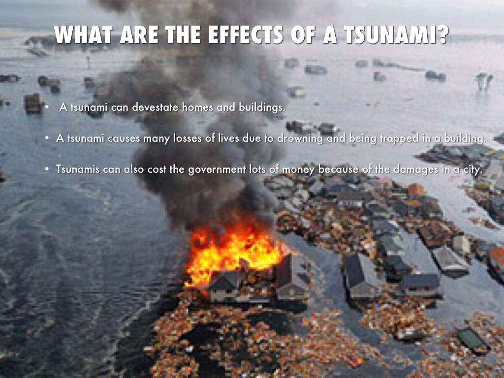 the cause and effects of tsunami What are the causes and effects of  testing of atom bombs or hydrogen bombs may be severe to cause earthquake effects of  on tsunami  earthquake in sikkim.