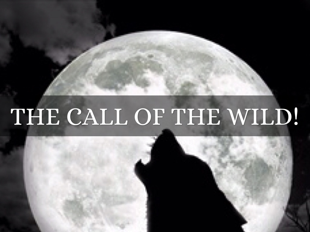 an analysis of the book the call of the wild ''the call of the wild'' is the story of survival and change in nature's harshest conditions, told through the story of a sled dog read a synopsis of this well-known.