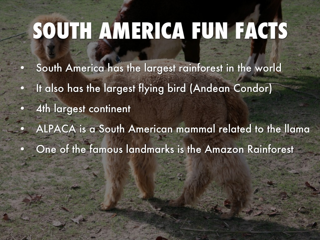 Copy of continents by brittany sewell for Fun facts about america