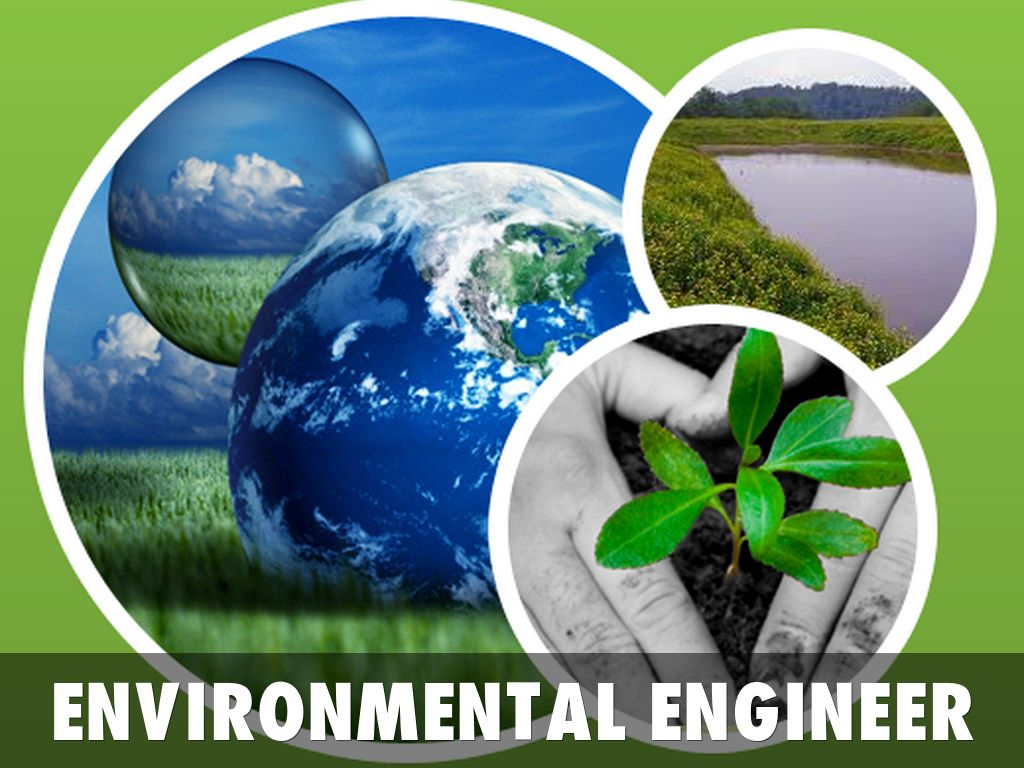 What environmental engineers do