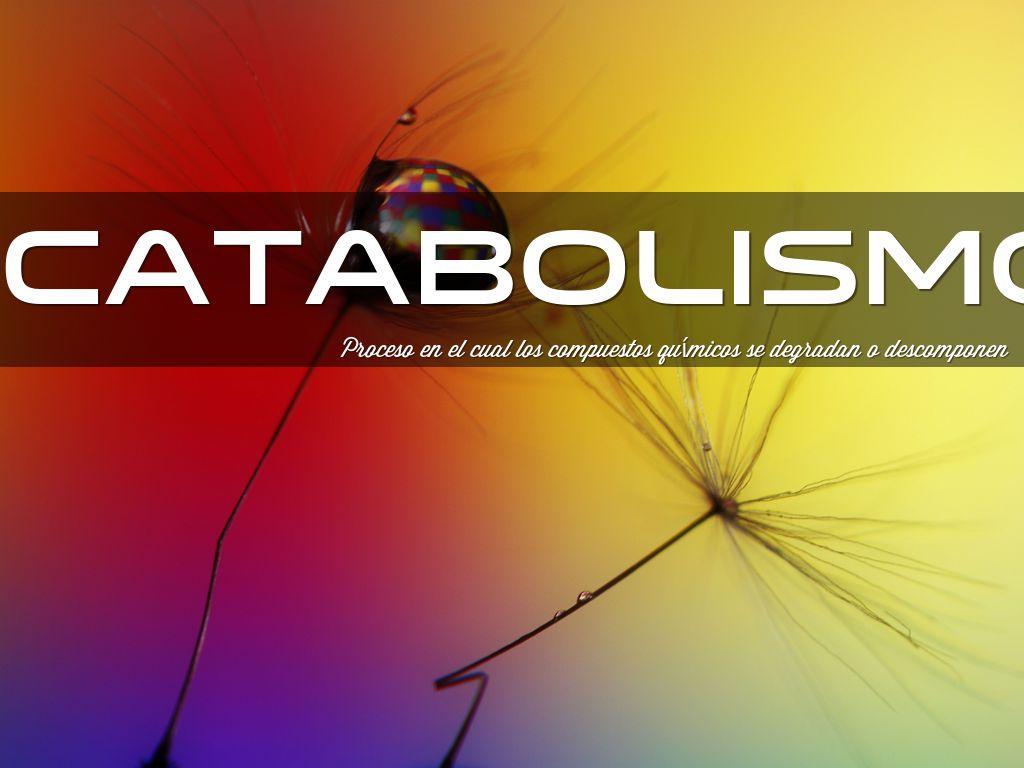 Metabolismo Celular by estradanroque1972