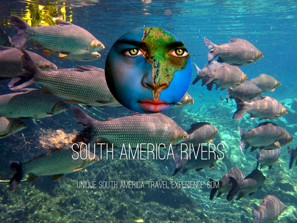 South America Rivers by Daniel Moore