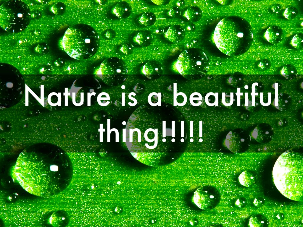 copy of copy of nature is a beautiful thing      by