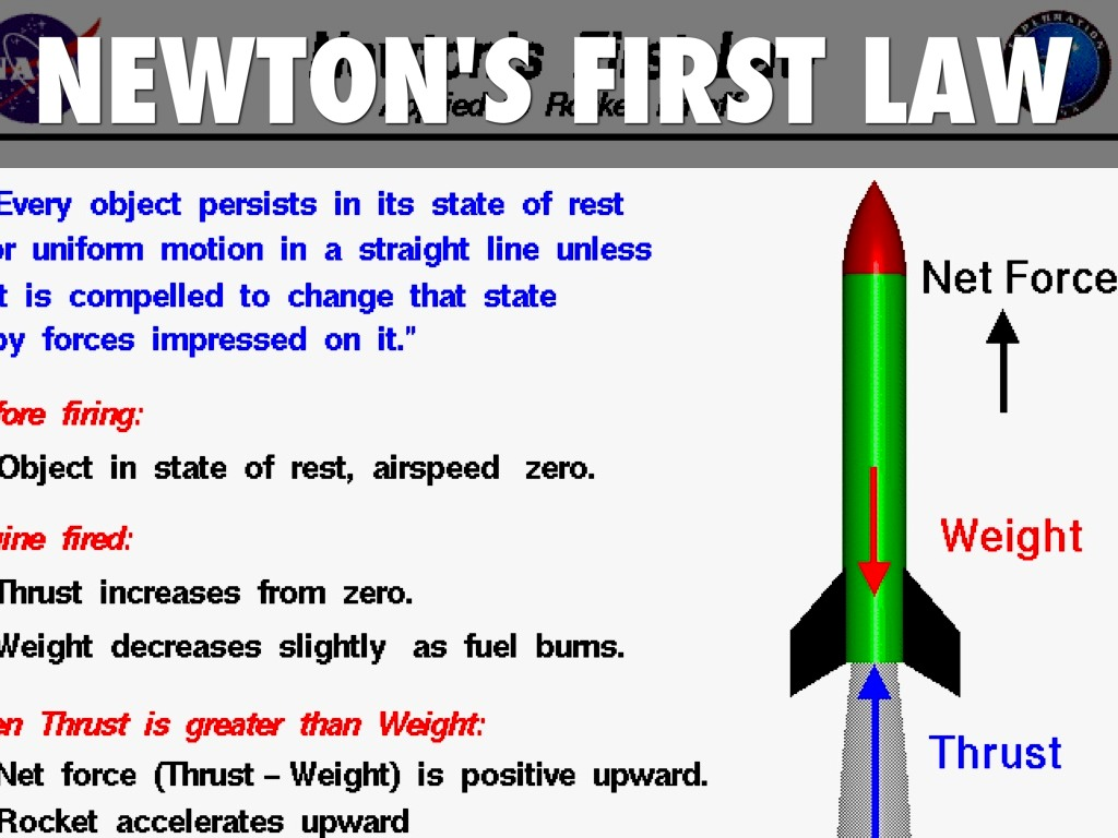 NEWTON'S LAW OF MOTION by Holly Hedgepeth
