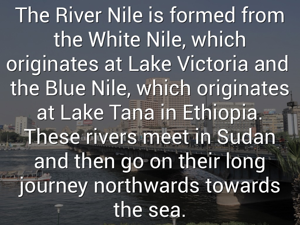 woodlands river nile