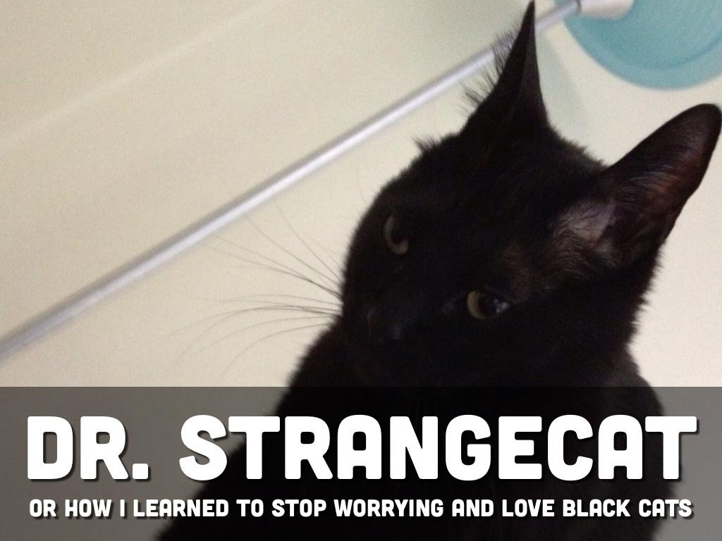 Dr. Strangecat