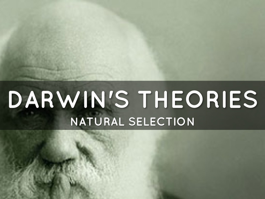 darwin s theory of natural selection fear of heights