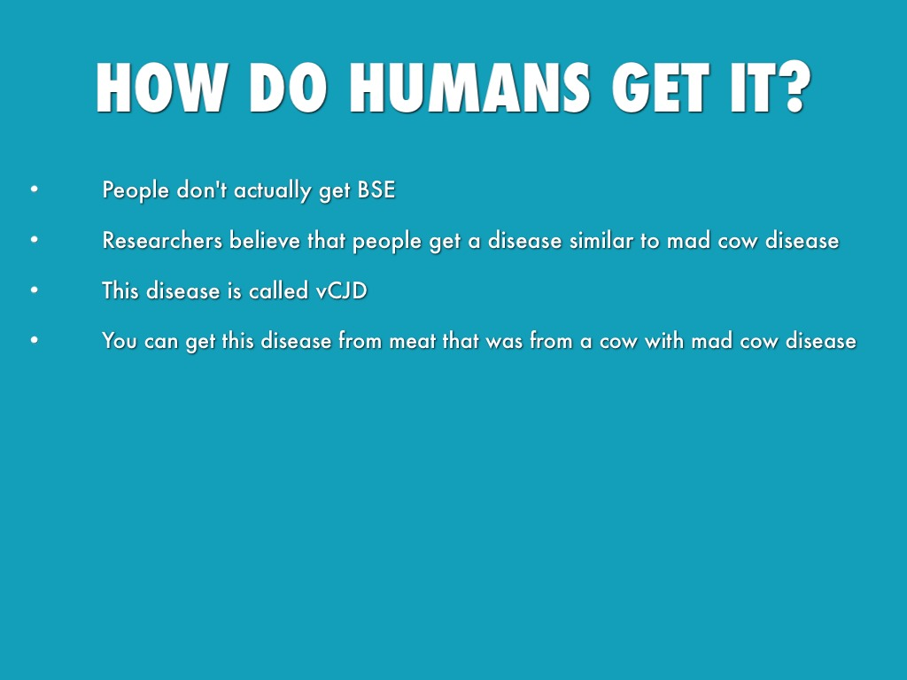 mad cow disease research papers
