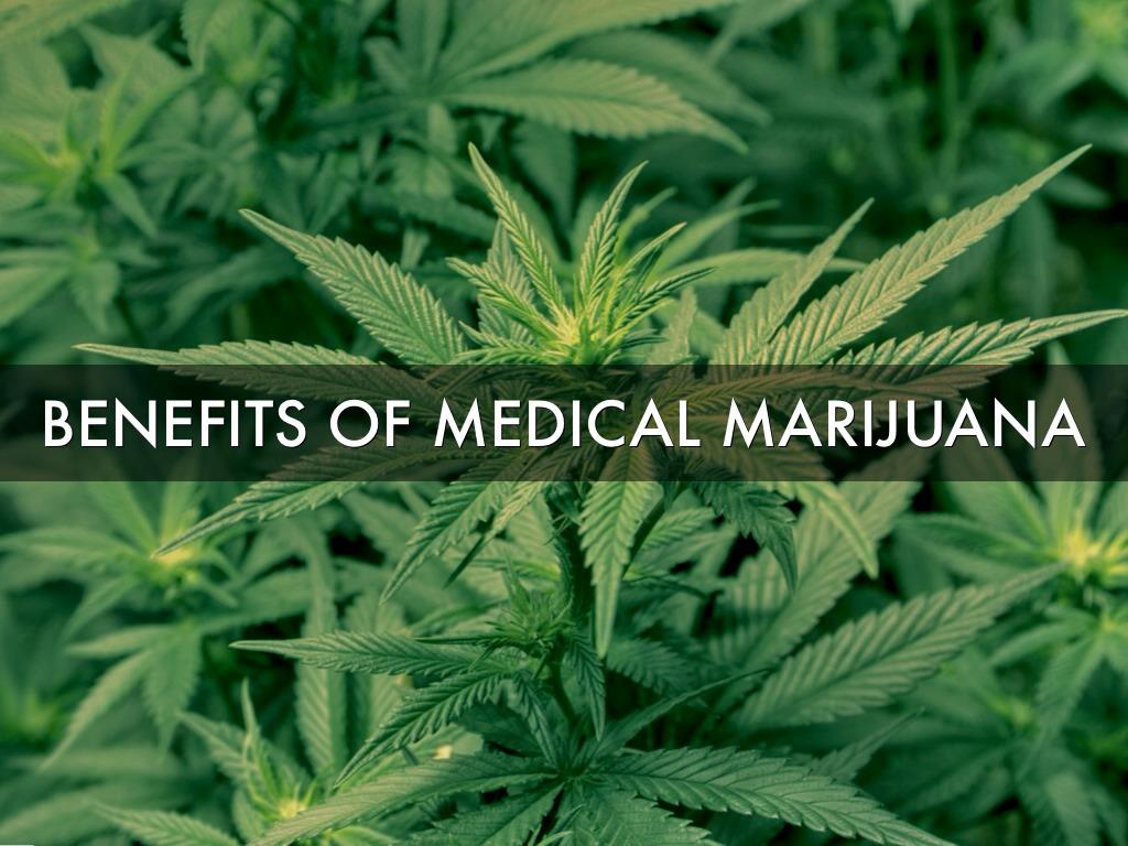 benefits and hazards of medical marijuana essay