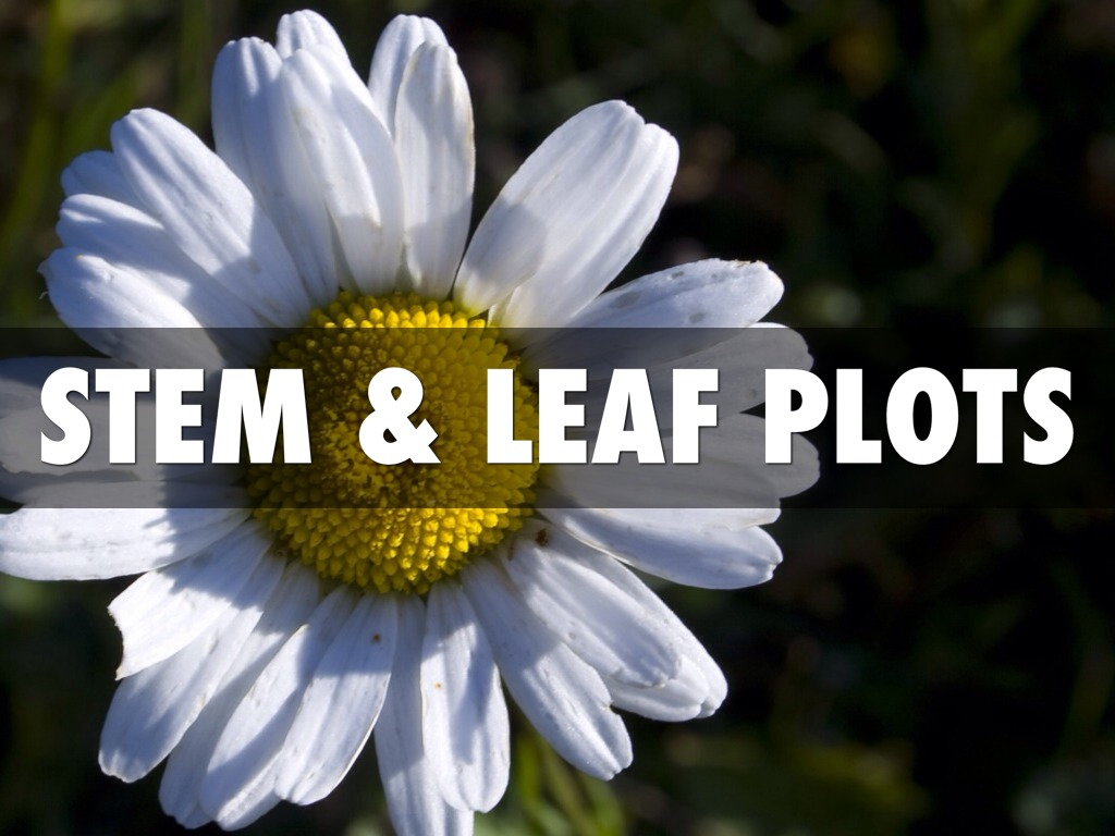 how to make a stem and leaf plot in matlab