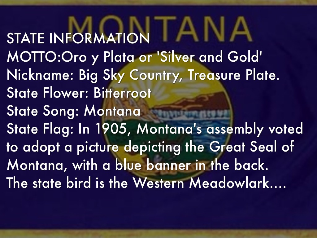 Montana By Britney Joines
