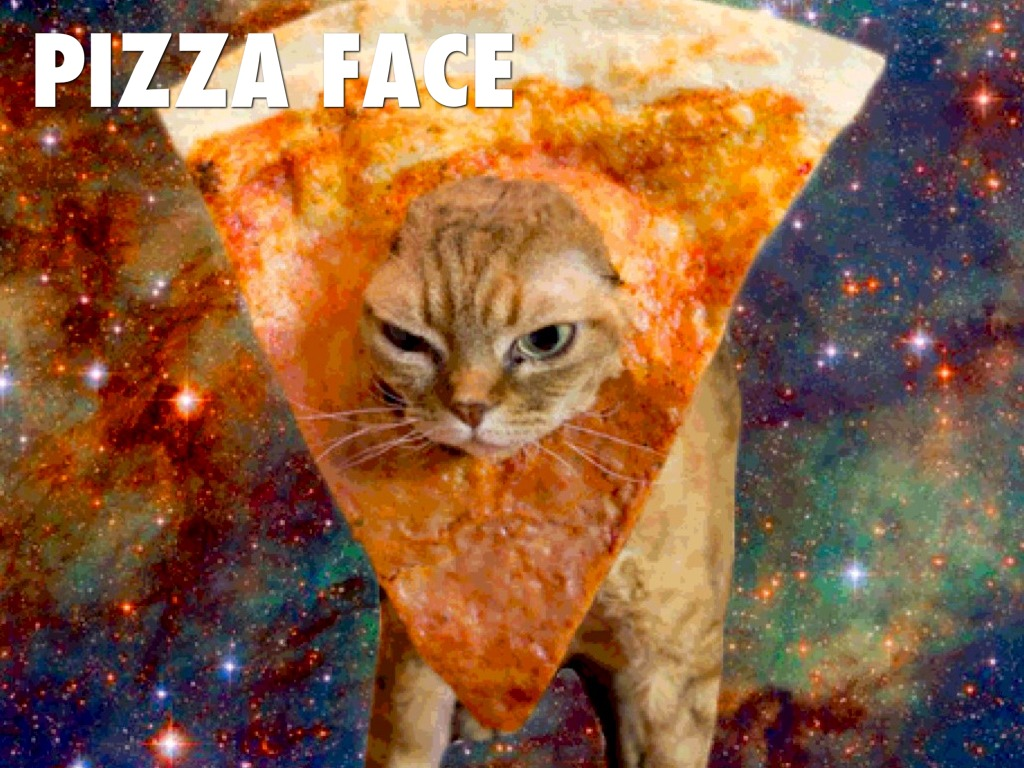 Funny Theme Pizza Space Cat