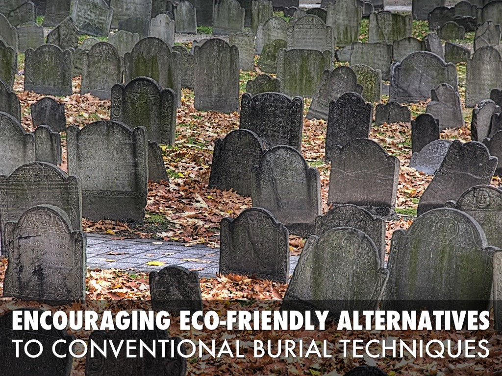 encouraging eco friendly alternatives to conventional methods Midwest grows green it is an alternative to conventional practices which depend on the application of synthetic eco-friendly alternative products.