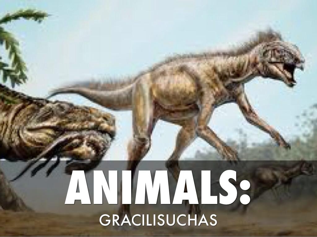 Triassic Animals List Triassic Time Period. ...