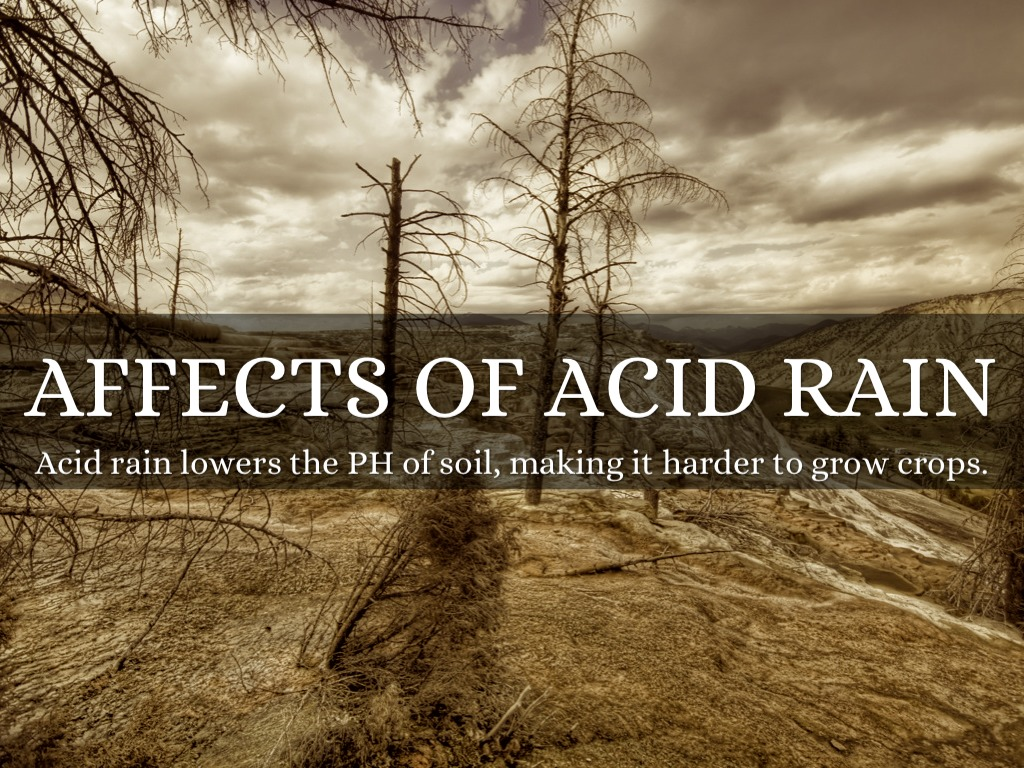 effect of acid rain on historical monuments The most notable effects occur on marble and limestone, which are common building materials found in many historic structures, monuments, and gravestones sulfur dioxide, an acid rain precursor, can react directly with limestone in the presence of water to form gypsum, which eventually flakes off or is dissolved by water.