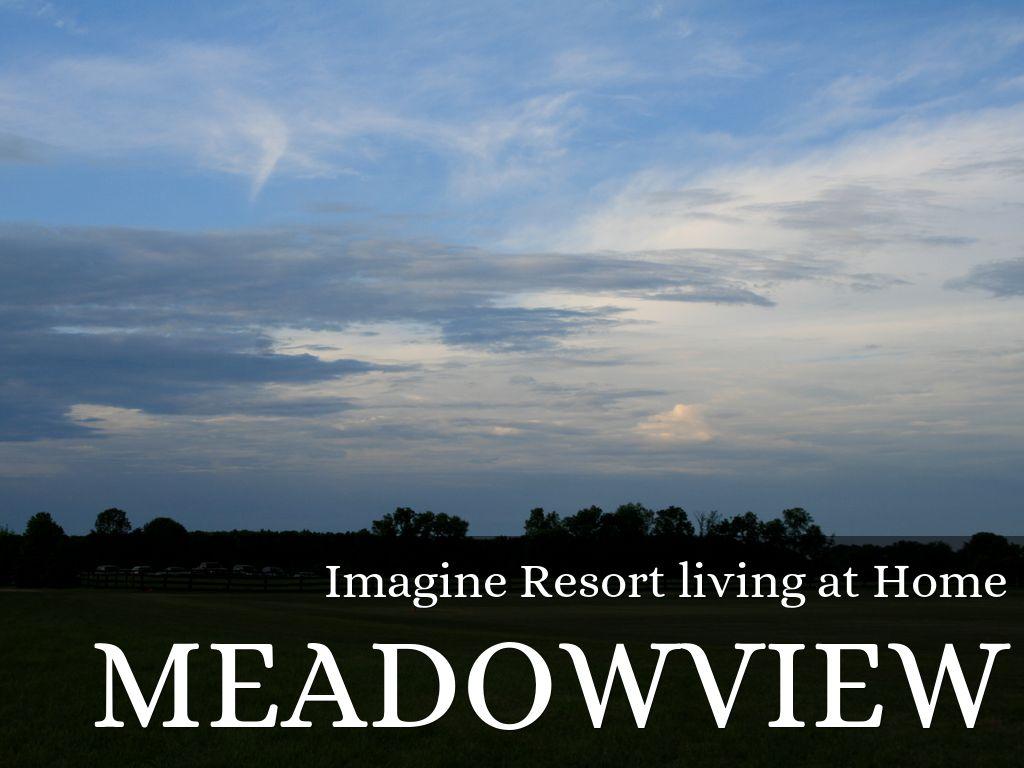 Meadowview